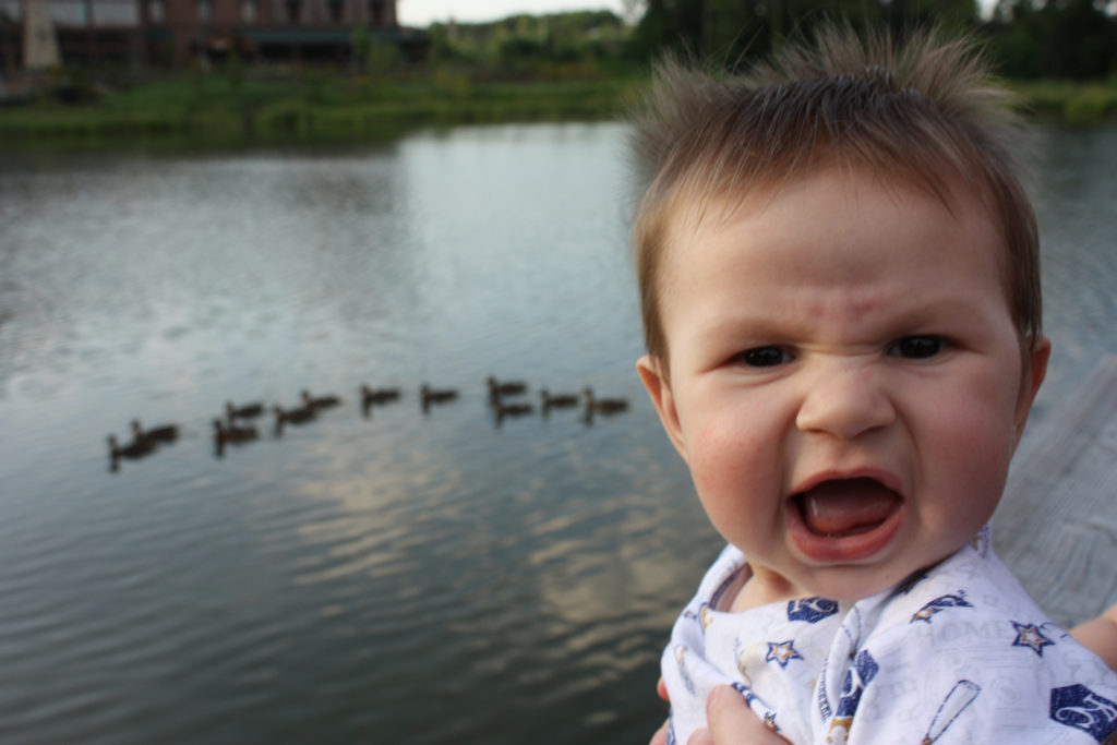 """""""Silly baby"""". Photo credit Aaron Brinker @ Flickr. Thank you, Aaron, for sharing."""